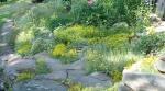 rock_gardens_6.jpg